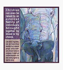 It takes a herd to raise a child (African elephant) Photographic Print