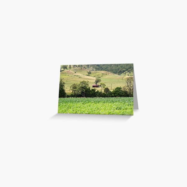 Country Meadows Greeting Card
