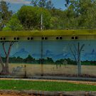 Mural - Lyons Club Park Gulargambone by pedroski