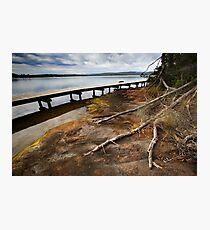 Merimbula Boardwalk Photographic Print