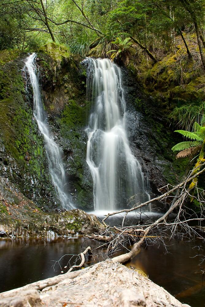 Hogarth Falls by Igor Janicijevic