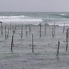 Stick Fishermen by Jonathan Dower