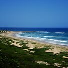 Wild & Rugged Australian Beach by Of Land & Ocean - Samantha Goode