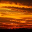 Dramatic Sunset  by Of Land & Ocean - Samantha Goode