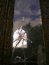 Broken Rusty Window by Mojca Savicki