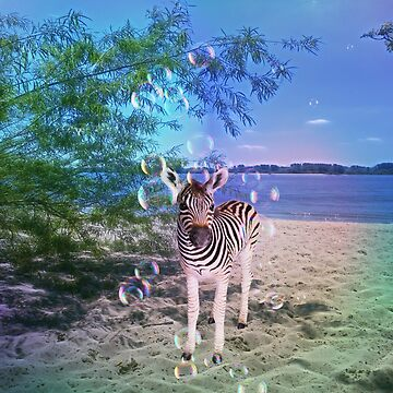 Zebra with bubbles by LuciaS