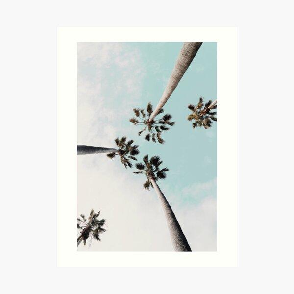 Palm trees Palms print Art Print
