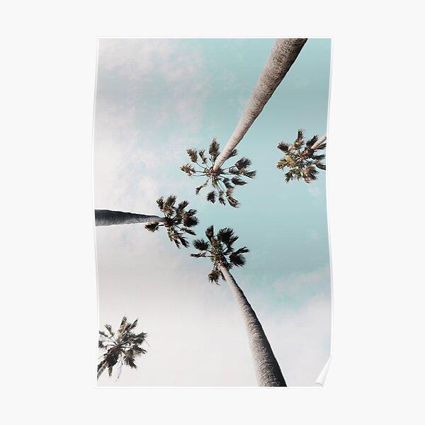 Palm trees Palms print Poster
