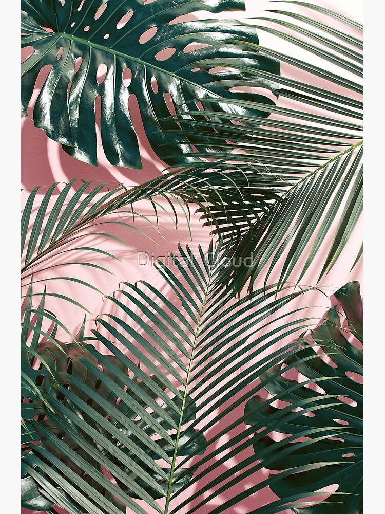 Pink Tropical Leaves Greeting Card By Nth4ka Redbubble Download free image of tropical leaf on pink background by jira about palm tree, palm, flat lay, palm leaf and plant 400757. redbubble