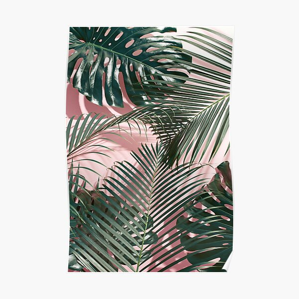 Pink tropical leaves Poster