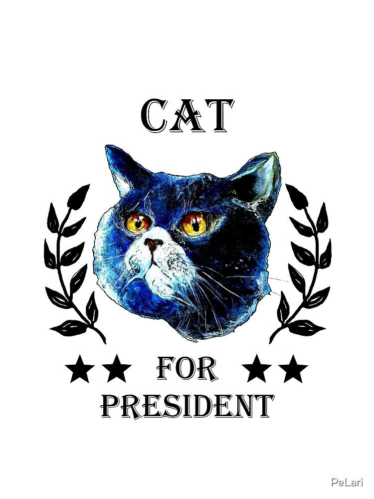 CAT FOR PRESIDENT! by PeLari