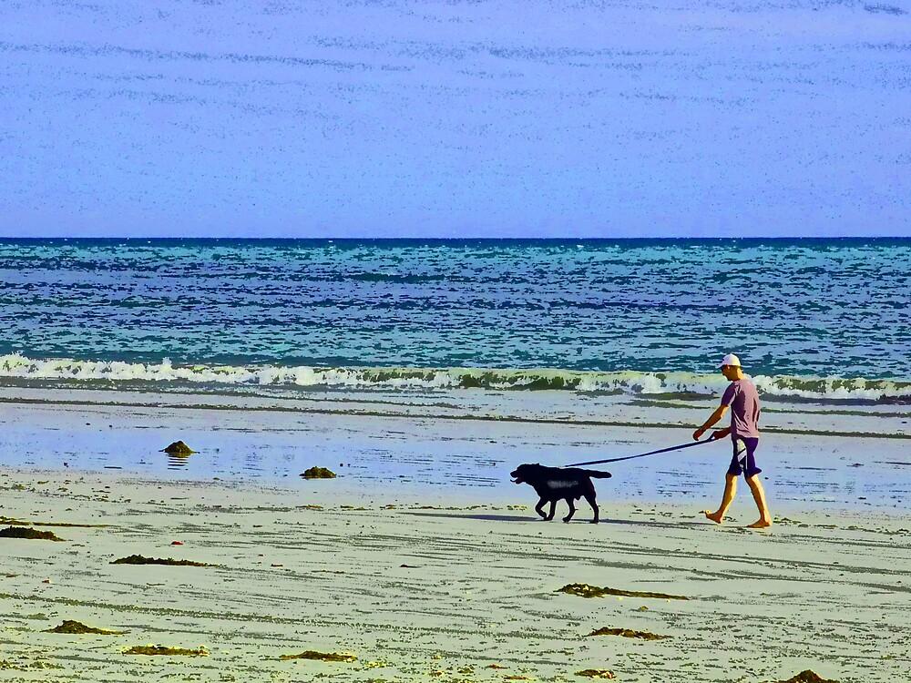 walking the dog by timrockk