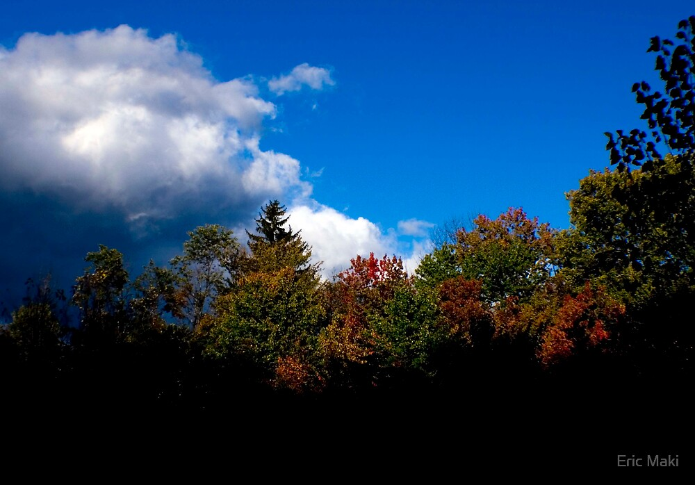 fall trees blue sky by Eric Maki