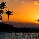 Napili Beach Sunset, Maui by Barb White