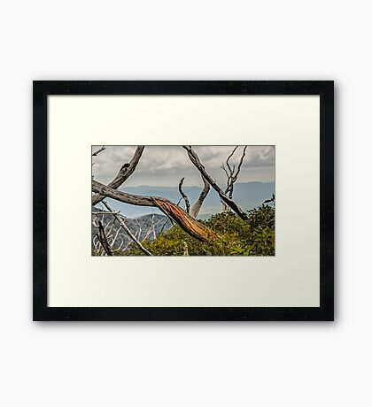The Colour Within Framed Print