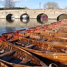 row of rowers by gruntpig