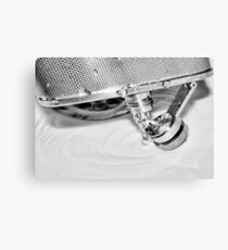 Emptying the flask Canvas Print