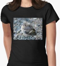 Please Don't Step On Me! - Chaffinch - NZ Womens Fitted T-Shirt