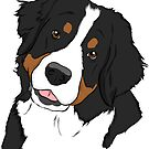 Bernese Mt. Dog  by rmcbuckeye