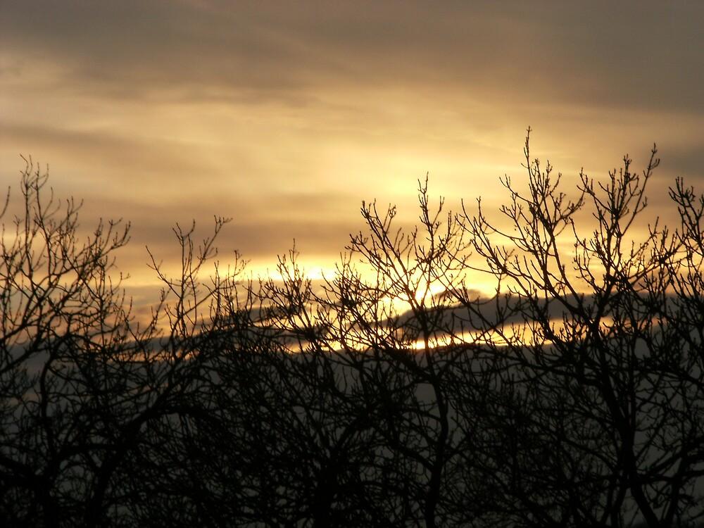 sunset by zakpearce