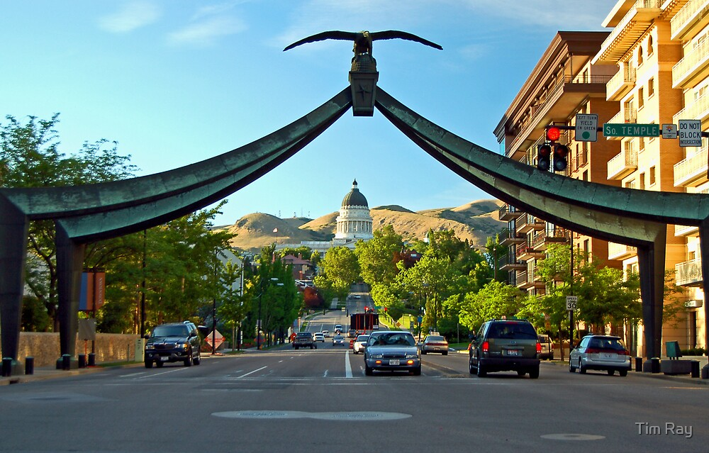 Utah's Capital Building by Tim Ray