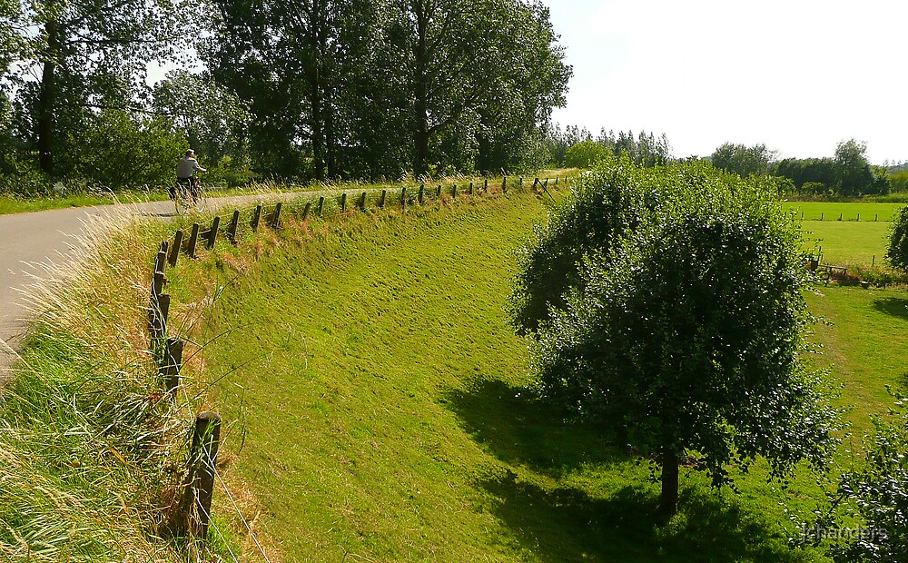 Cycling on a summer dike by jchanders