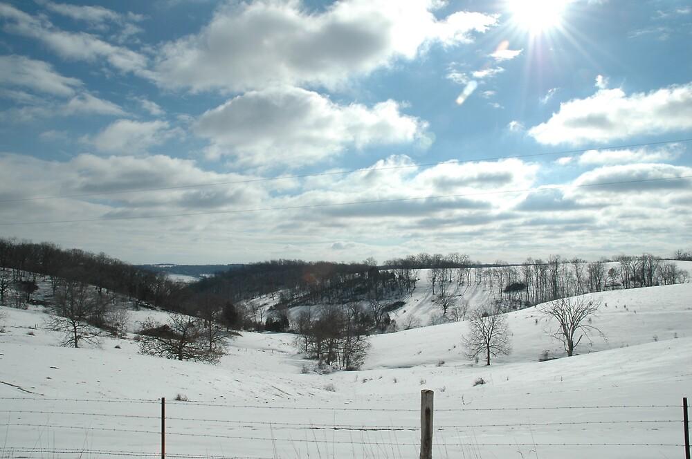 winter sky by cynthia  brown