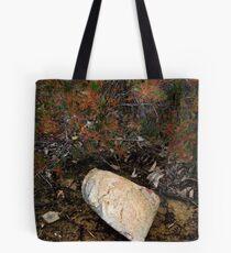 ∇ Tote Bag