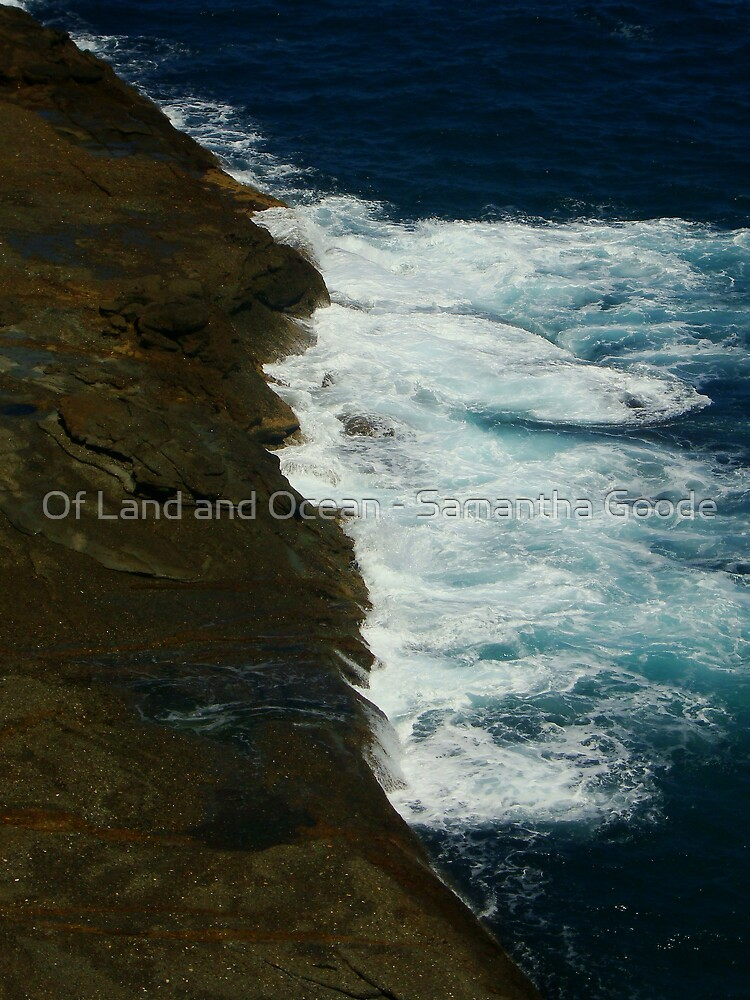 Diagonal Contrasts  by Of Land & Ocean - Samantha Goode