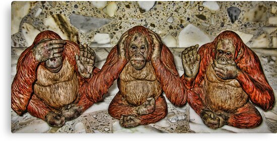 see no evil..hear no evil..speak no evil~ by WJPhotography