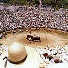 Bull Fighting in OKINAWA 1970 by Larry Llewellyn