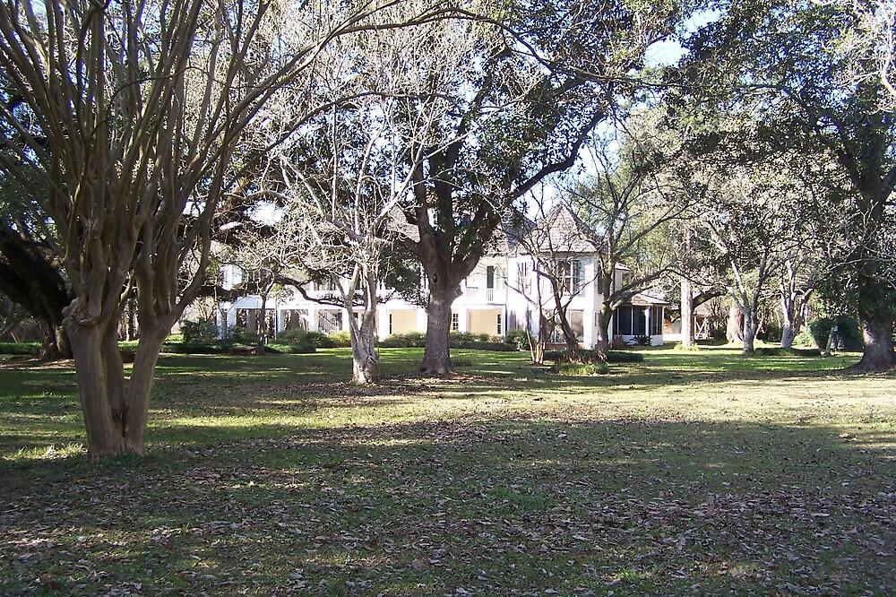 Louisiana Plantation Mansion by burgamy