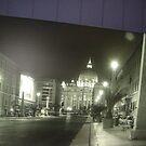My last trip to Vienna by Daniela Cifarelli