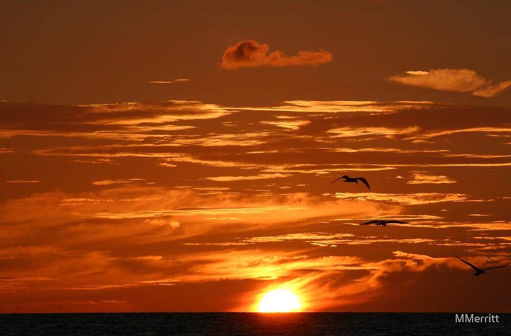 Clouds of Gold by MMerritt