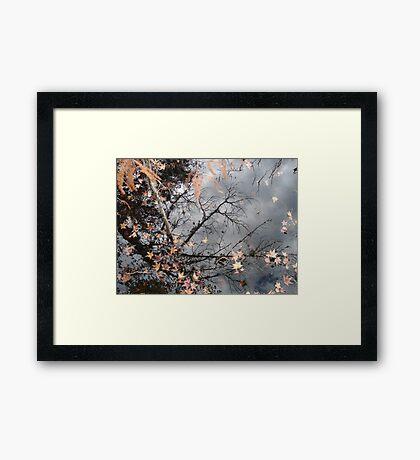 Filigree Framed Print