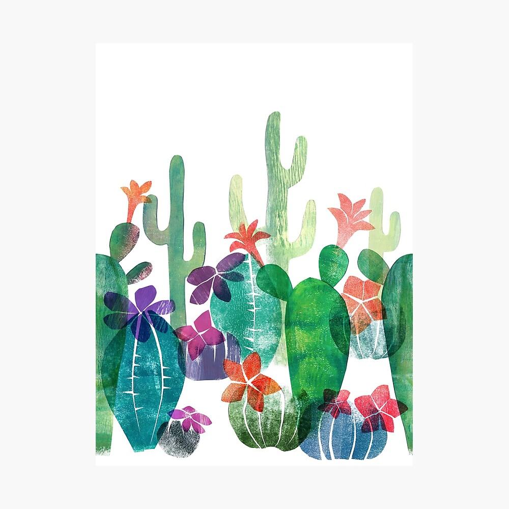 Blooming desert Photographic Print