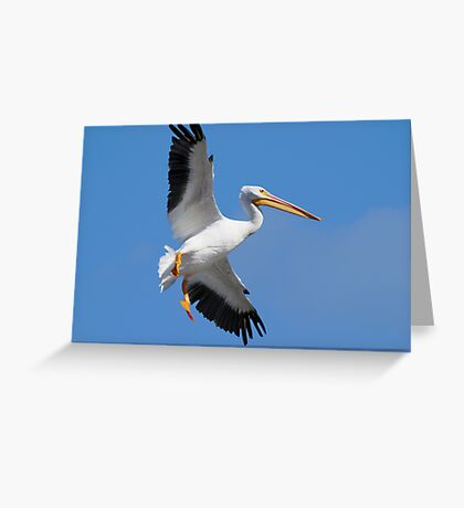 In Broad Daylight Greeting Card