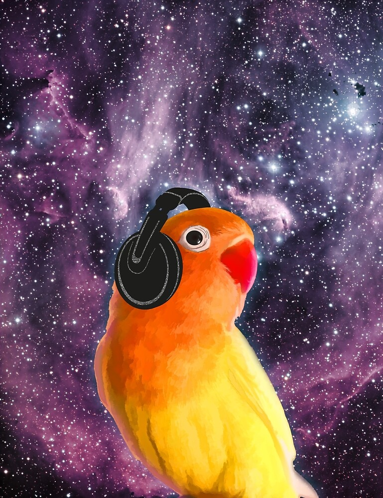 Lovebird Listening to Music in outer Space by sundressed