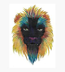 Colored lion Photographic Print