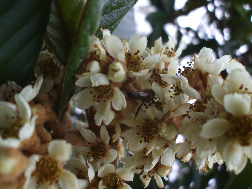 BEE~ING HAPPY by Dalzenia Sams