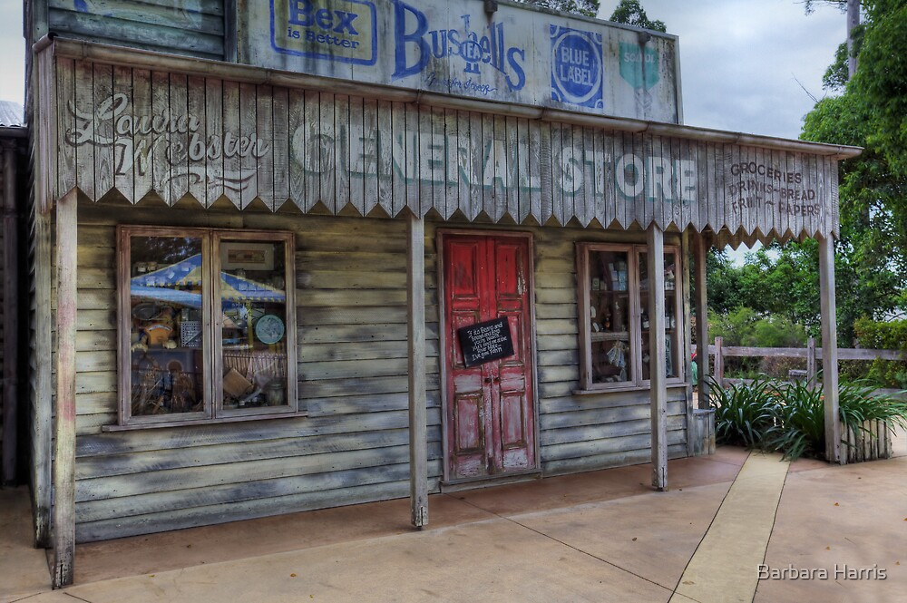 Old General Store-1017-HDR by Barbara Harris