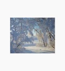 Snow caked trees Art Board