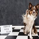 Happy New Year wishes  by Karen Havenaar