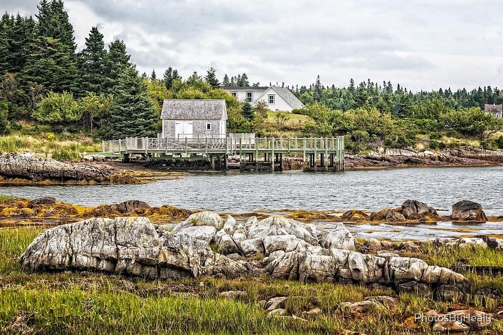 Bush Island by PhotosByHealy