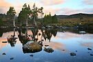 Tarn Reflections, Cradle Mountain National Park, Australia by Michael Boniwell