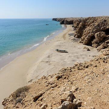 Wild Beach  by stedata
