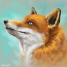 Painting of a Red Fox Looking to the Left with Turquoise Background  by ibadishi