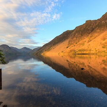 Golden Screes by Sumosan