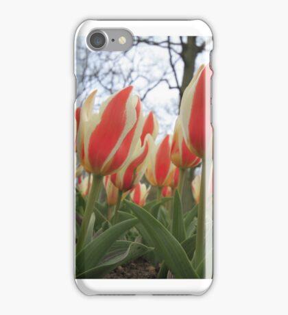 ...Spring..fruhling..le printemps..wiosna..voorjaar iPhone Case/Skin