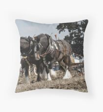An Image Of Passion Throw Pillow